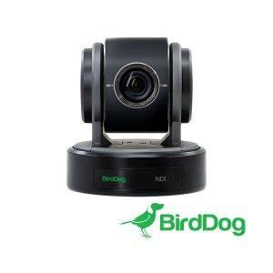 BirdDog_P100B