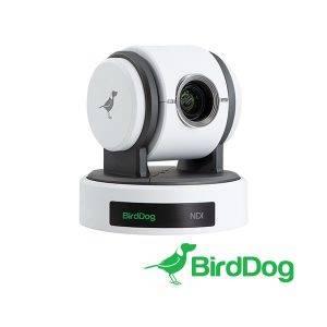 BirdDog_P100W