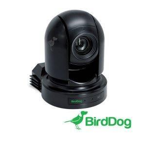 BirdDog_P200B