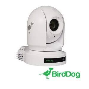 BirdDog_P200W