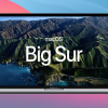 Apple macOS 11 (Big Sur) Support for Avid Products